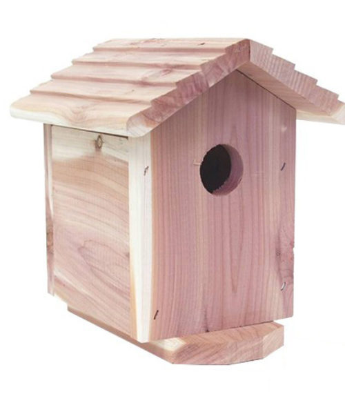 covert-bird-house-hidden-camera__37004_zoom