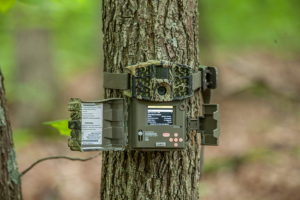 best trail game camera