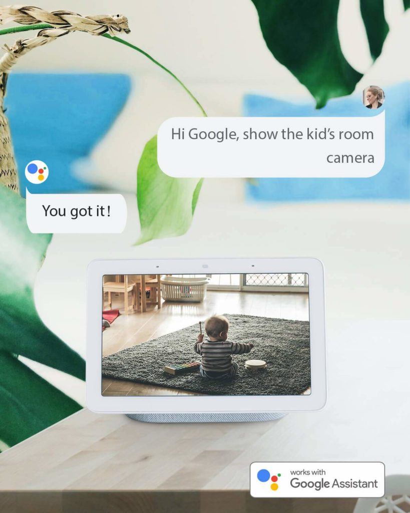 Reolink Argus Eco Google Assistant